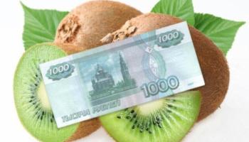 Где и как взять в долг 1000 рублей на Киви без проверок и отказов?
